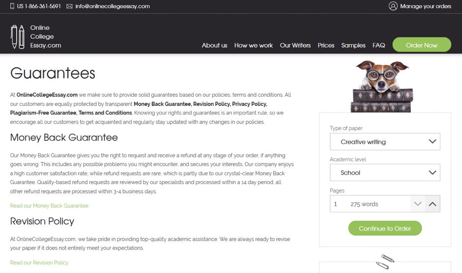 Buy academic essays online