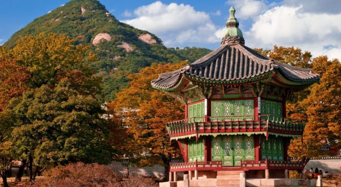 Tips For The Students Aiming To Study Abroad In South Korea